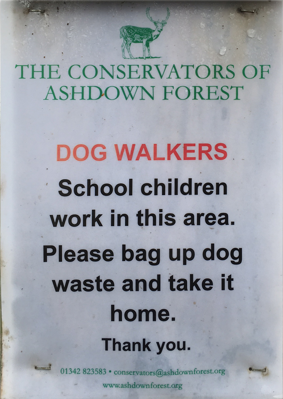Ashdown Forest, Dog Walkers