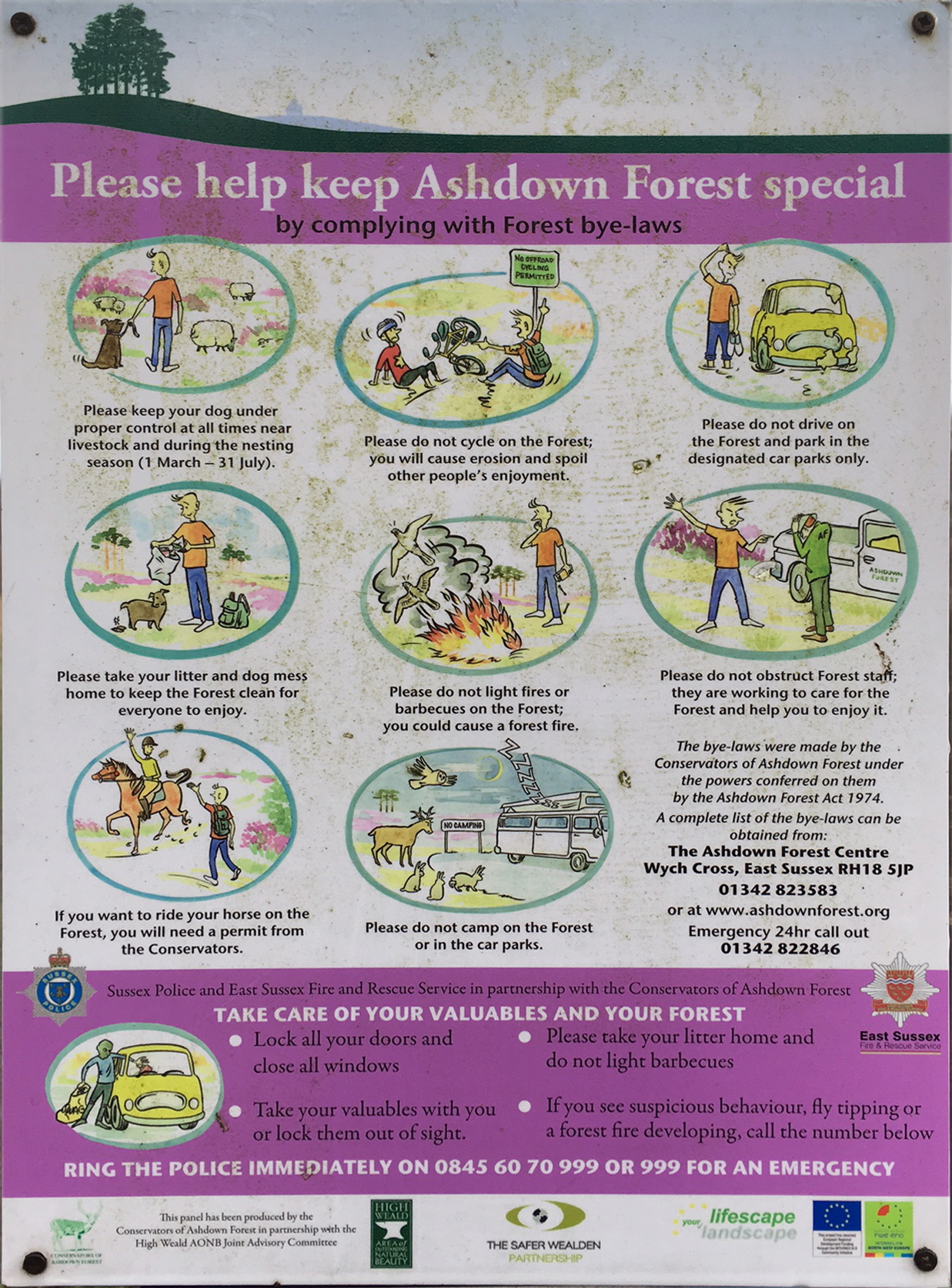 Keep the Ashdown Forest Special