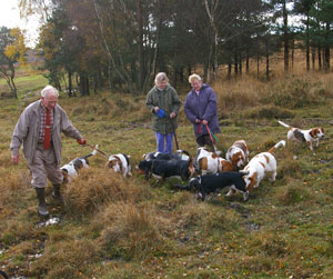 Brian, Jill and Jean with Basset Hounds on Ashdown Forest