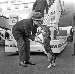 Bob Hope with Basset Hound