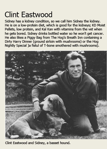 Clint Eastwood with his Basset Hound Sidney