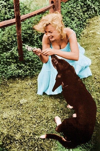 Marilyn Monroe with her Basset Hound Hugo