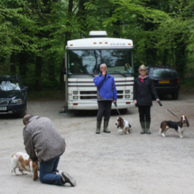 Amèlie le Vins in Friston Forest with Basset Hounds