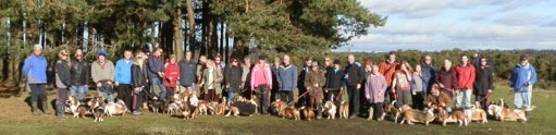 Basset Hound Owners group photo at Friends Clump