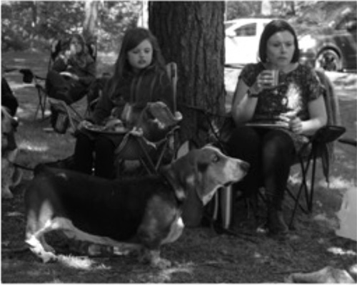 Basset Hound Owners picnic