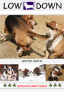 Cover of the Basset Hound Owners Club newsletter Lowdown